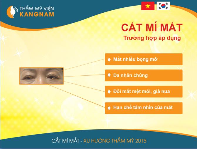 cat-mi-han-quoc-tai-kang-nam
